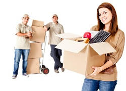 Organising Your Moving Day